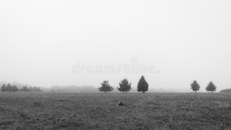 Mistyczki ziemia fotografia stock