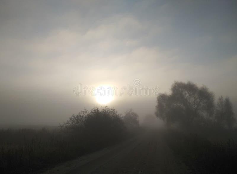 Mistyczni ranek mgły jesieni krajobrazu drzewa, światło słoneczne i drogowa naturalnego tła tapeta obrazy royalty free