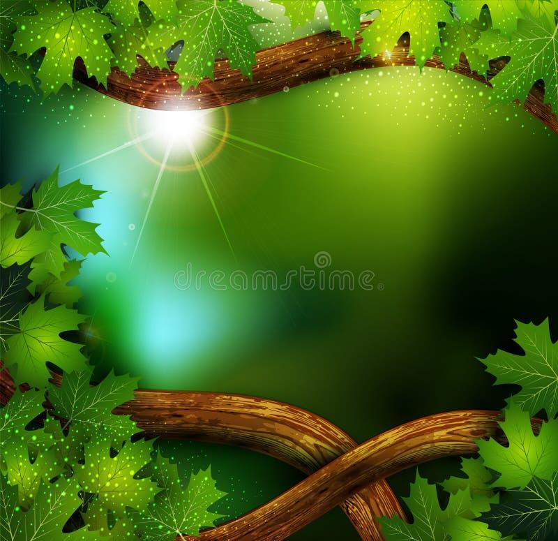 mistyczny tło las ilustracji