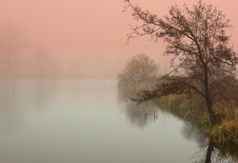 Mistyczny wschód słońca w jesieni stawem fotografia royalty free