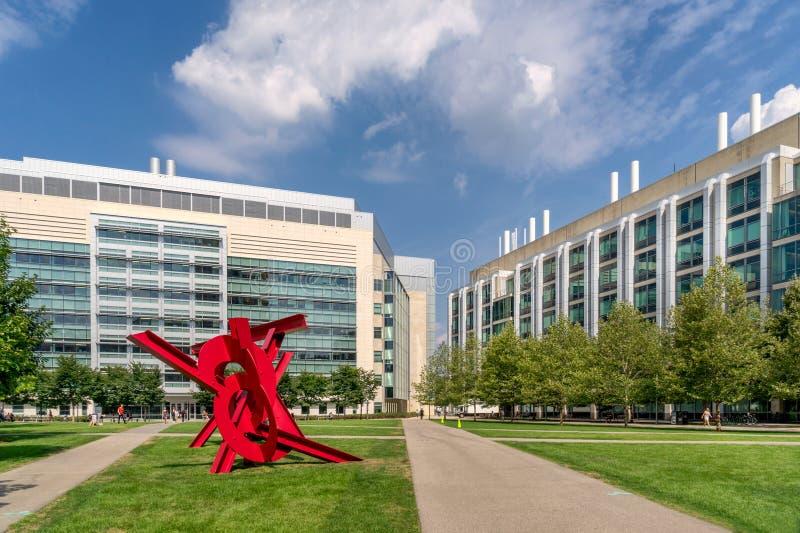 MIT στη Βοστώνη στοκ εικόνα με δικαίωμα ελεύθερης χρήσης