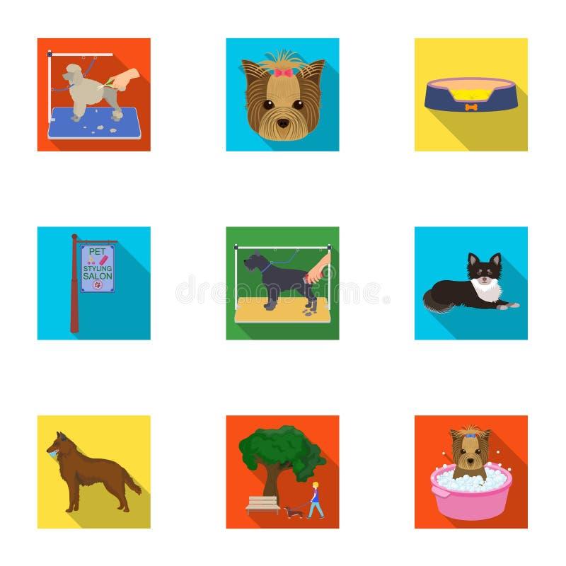 Mit einem Hund gehen, eine Tierarztklinik, ein Hundehaarschnitt, ein Welpenbaden, ein Haustier einziehend Tierarztklinik und gese stock abbildung