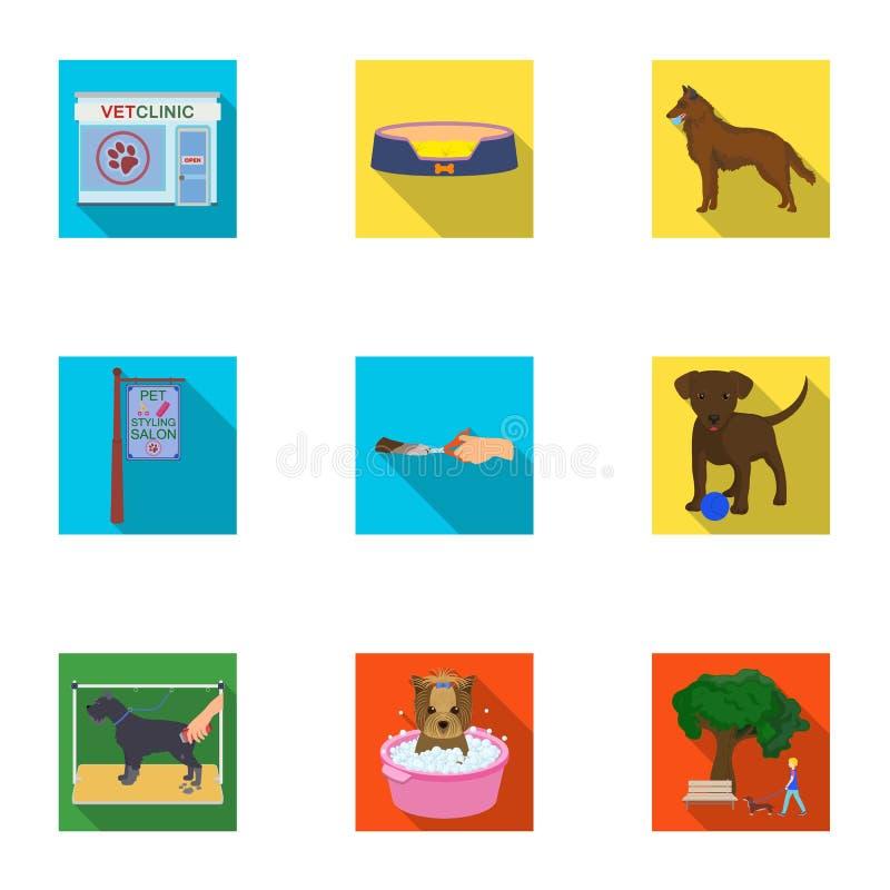 Mit einem Hund gehen, eine Tierarztklinik, ein Hundehaarschnitt, ein Welpenbaden, ein Haustier einziehend Tierarztklinik und gese lizenzfreie abbildung
