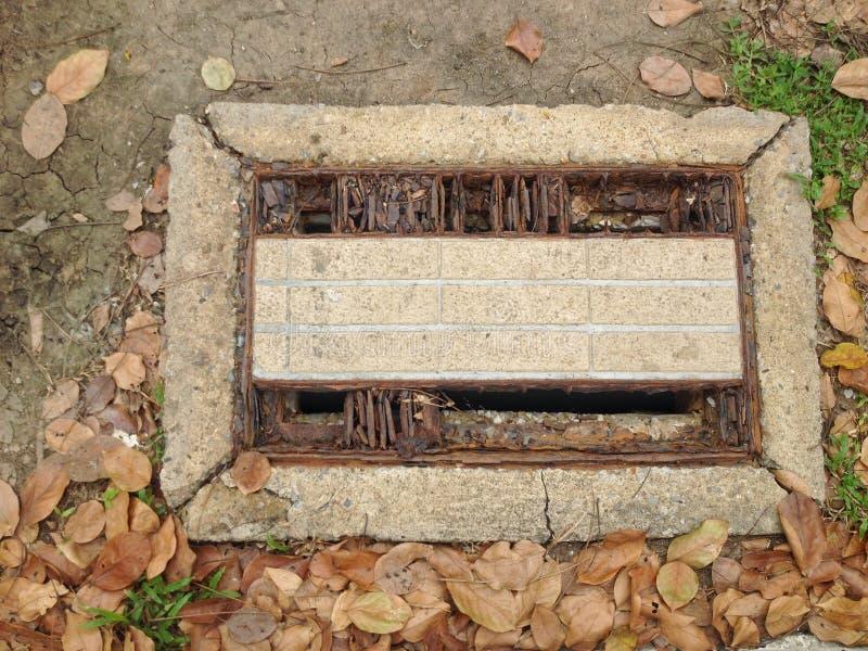 Mit Gras bedecken der Abflusskappe im Park lizenzfreies stockbild