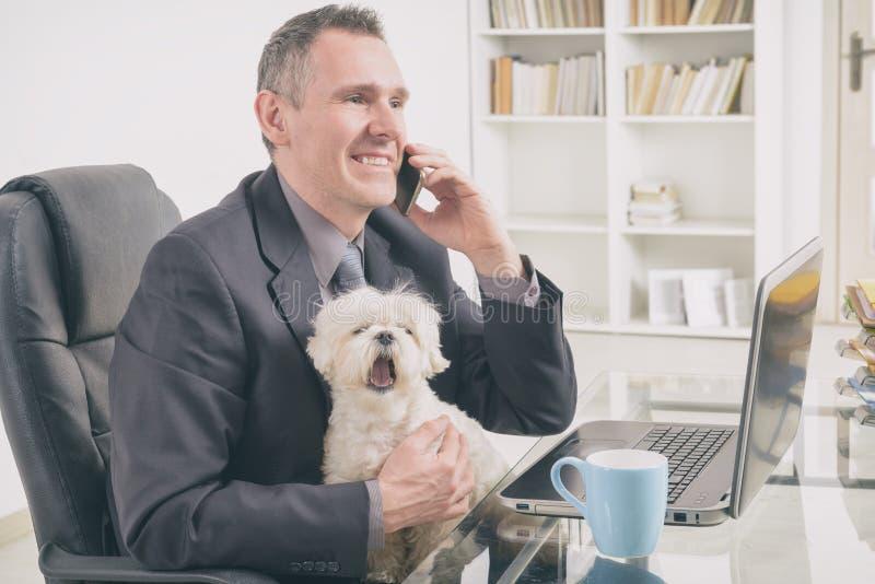 Mit Hund zu Hause arbeiten lizenzfreie stockfotografie