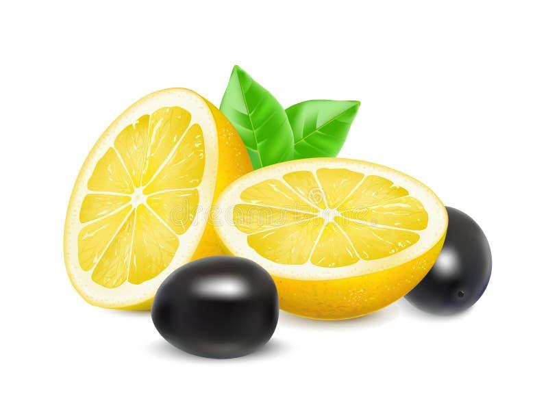 Mitad jugosa de un limón y de aceitunas negras ilustración del vector