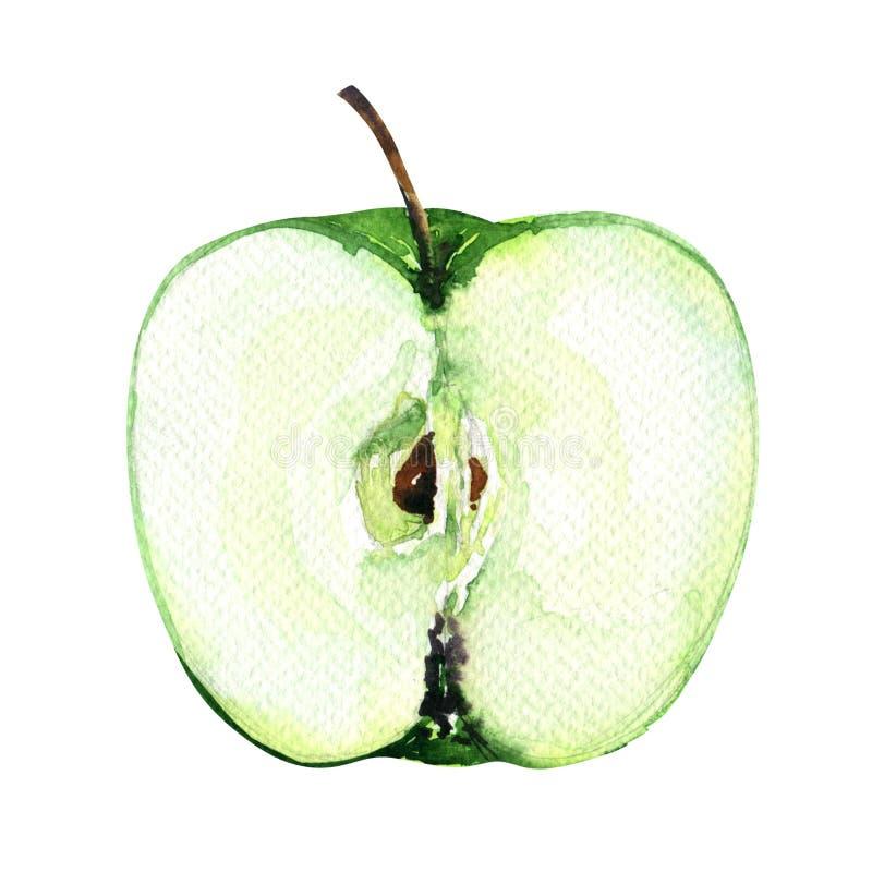 Mitad verde cortada fresca de la manzana en el fondo blanco stock de ilustración