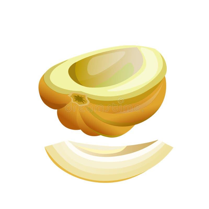 Mitad y rebanada del melón stock de ilustración