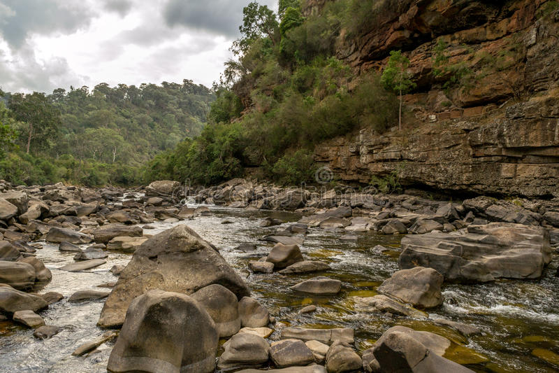 Mitchell River in Gippsland, Victoria, Australië royalty-vrije stock foto's