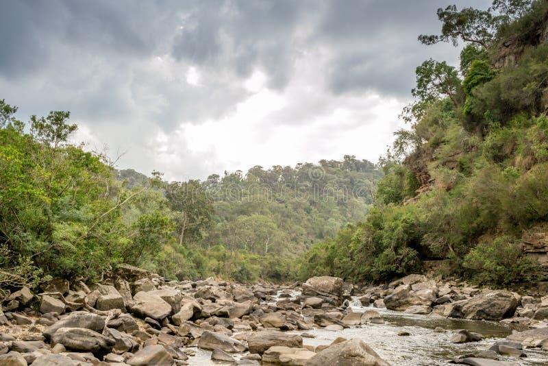 Mitchell River in Gippsland, Victoria, Australië stock afbeeldingen