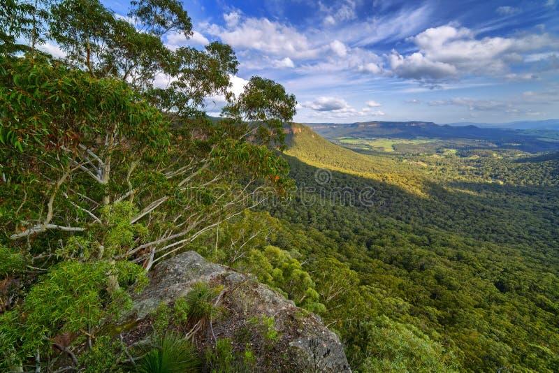 Mitchell& x27; s里奇监视,登上维多利亚,蓝山山脉, Austra 免版税图库摄影