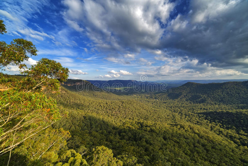 Mitchell& x27; s Ridge Lookout, Berg Victoria, blaue Berge, Austra stockfotos