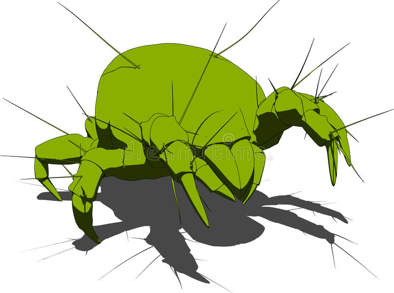 Mite - close up stock illustration
