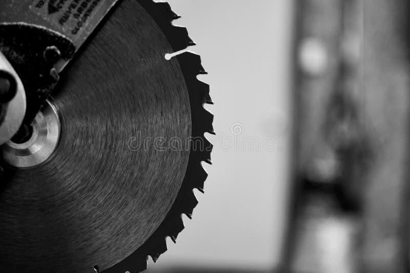 Miter λεπίδα πριονιών μπριζολών σε γραπτό στοκ εικόνες με δικαίωμα ελεύθερης χρήσης