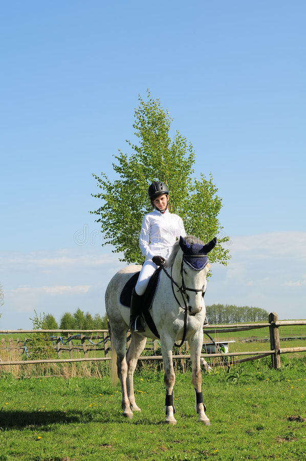 Mitfahrer des Pferds und des jungen Mädchens lizenzfreie stockfotos