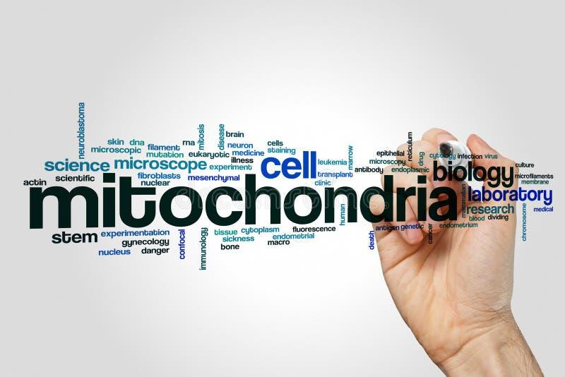 Mitochondriaordmoln fotografering för bildbyråer
