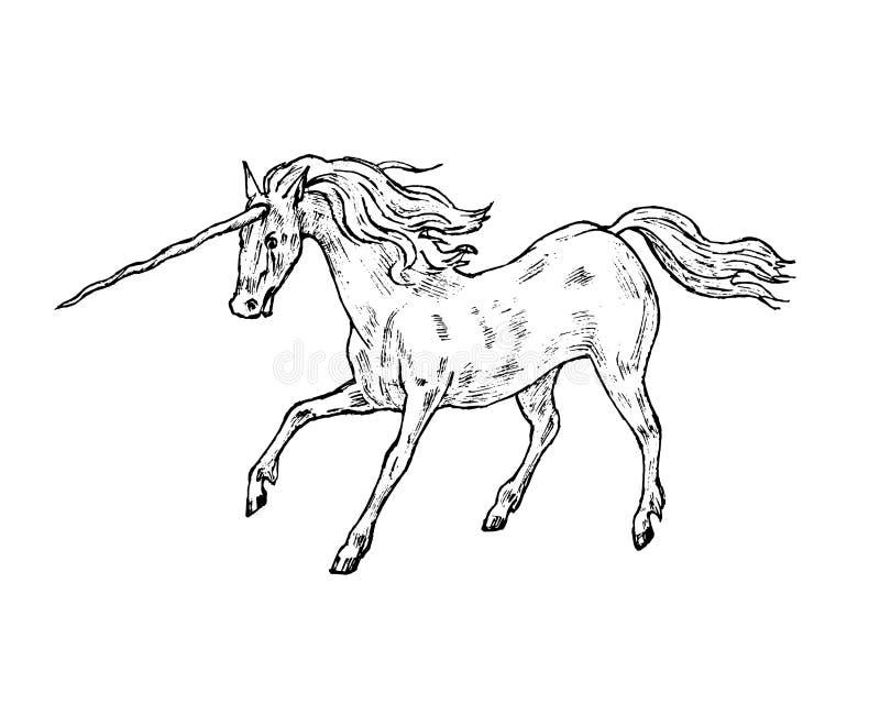 Mitologiczna jednorożec Mityczny antykwarski magiczny zwierzę Antyczny koń, fantastyczne istoty w starym roczniku projektuje ilustracji