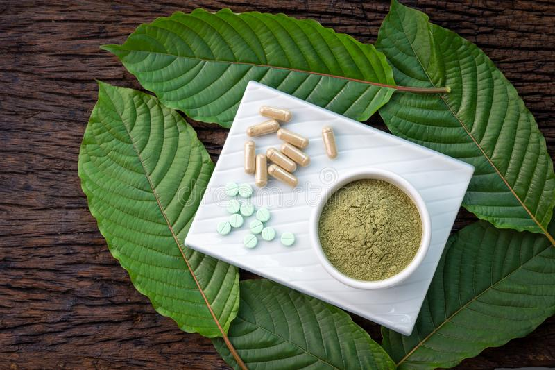 Mitragyna speciosa or kratom leaves with medicinal products in pills, capsules and powder in white ceramic bowl. And wooden table, top view royalty free stock image