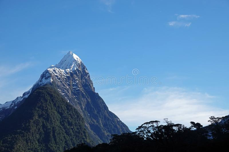 Mitre Peak with native trees in Milford Sound, New Zealand. Snow topped mountain Mitre Peak in Milford Sound at the South Island of New Zealand in winter stock images
