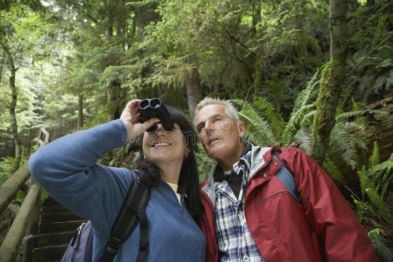 Mitt åldrades par med kikare i skog royaltyfria foton