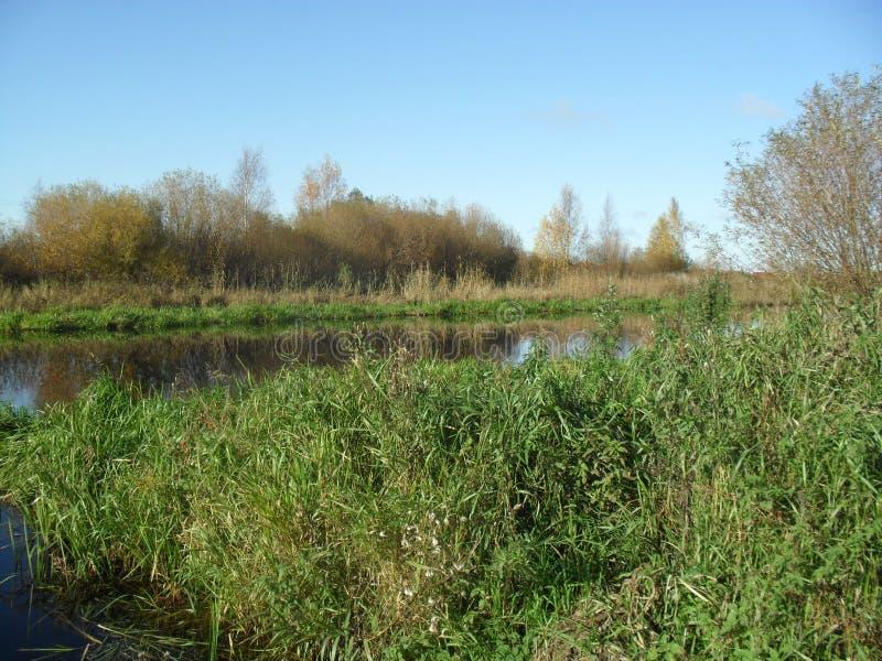 Mitt infödda land Den sceniska floden 2 arkivbild