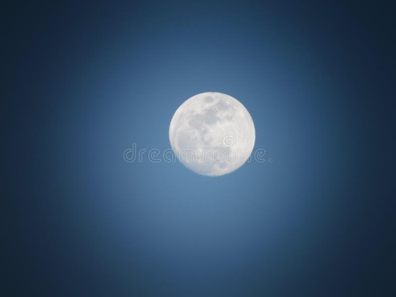 Mittags-Mond stockfoto