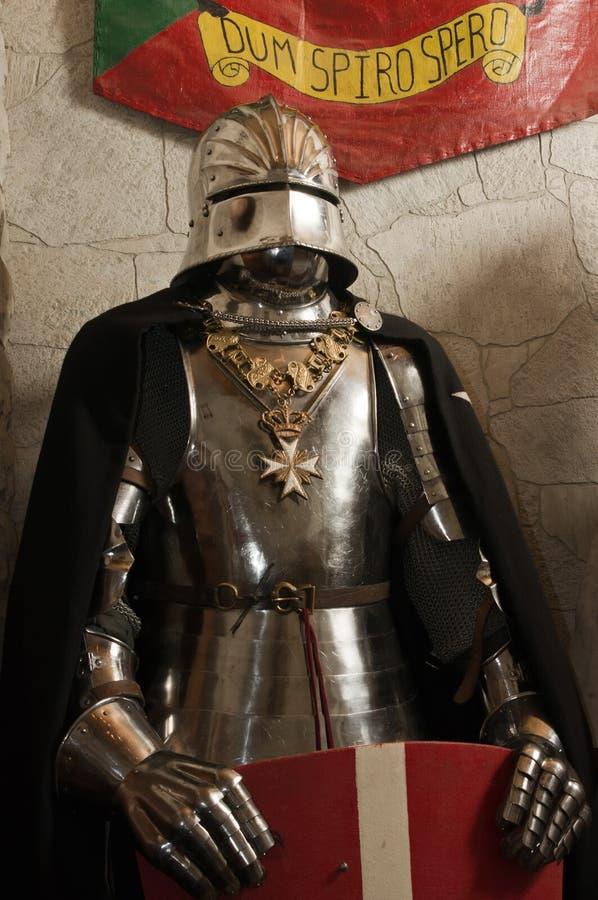 Mittelalterlicher Ritter - Kreuzfahrer lizenzfreies stockbild