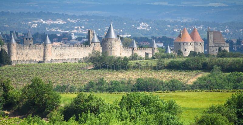 Mittelalterliches Carcassone mit Weinbergen - Frankreich stockbilder