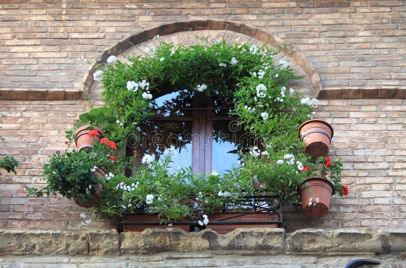 Mittelalterliches Fenster mit Blumentöpfen lizenzfreies stockbild