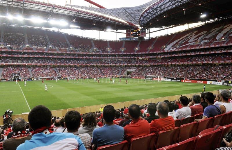 Mittelfeld Benfica-Fußball-Stadion - Fußballfane lizenzfreies stockbild