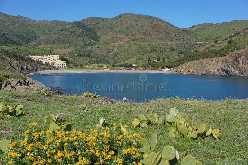 Mittelmeer Frankreich der Küstenlandschaftsbucht stockfotos