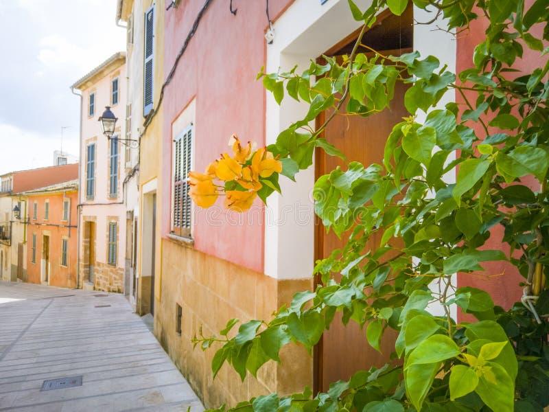 Mittelmeerarthäuser in der alten Stadt lizenzfreie stockfotos