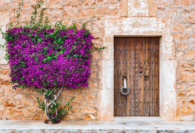 Mittelmeerhaus-Holztür und Bouganvilla lizenzfreies stockbild