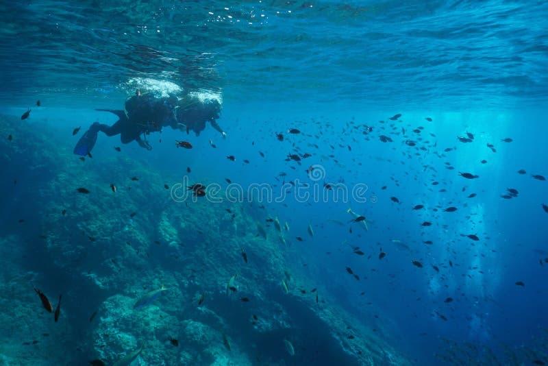 Mittelmeersporttauchentaucher betrachten Fische stockbild