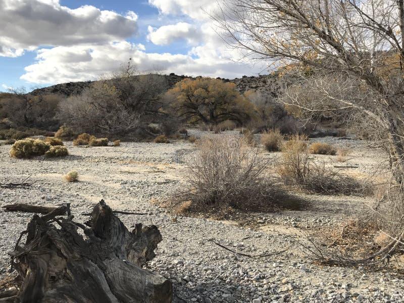 Mitten in Wüste lizenzfreies stockfoto
