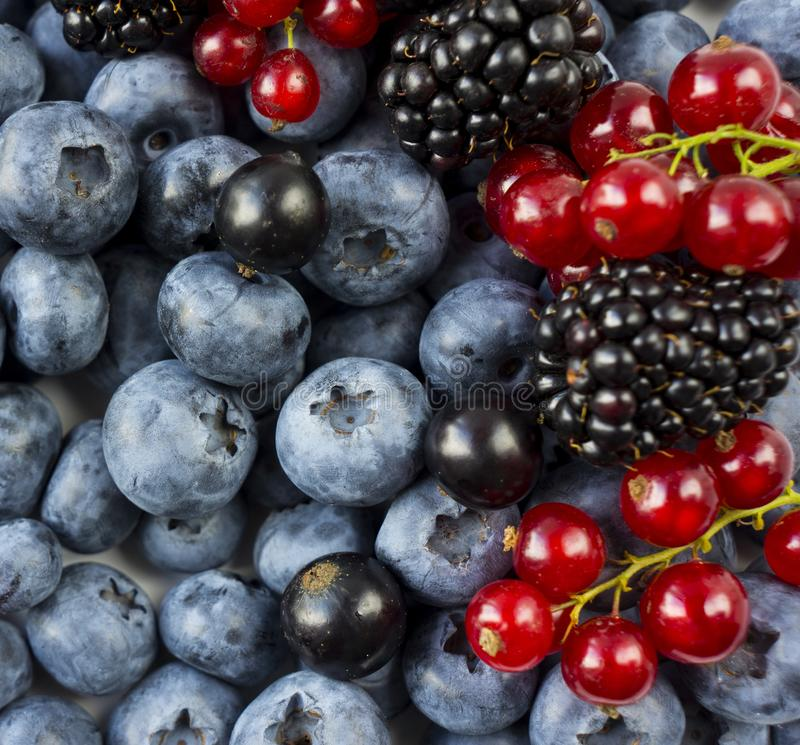 Mix berries and fruits. Ripe blackberries, blueberries, blackcurrants, red currants. Top view. Background berries and fruits. Vari. Ous fresh summer fruits royalty free stock images