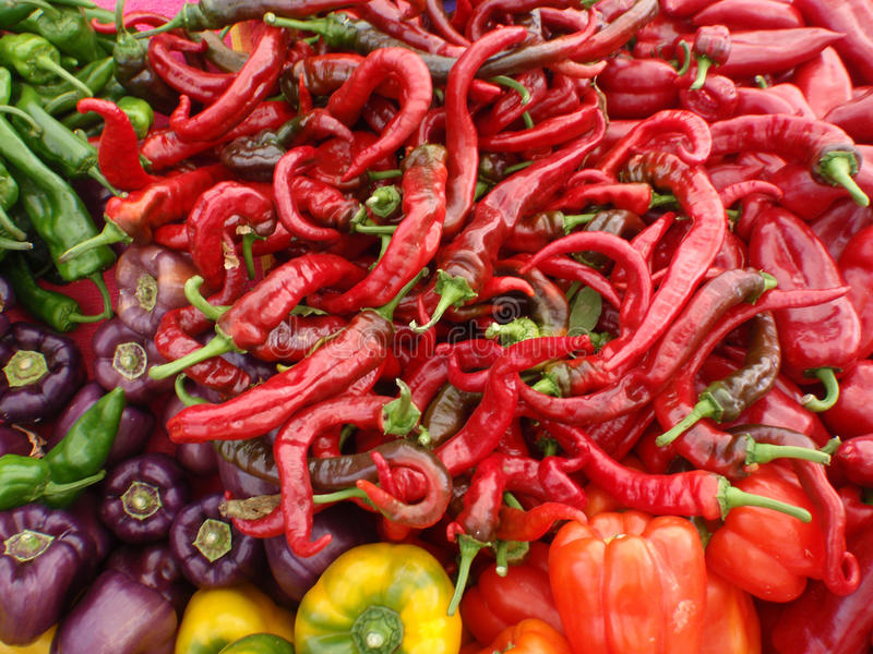 Mix of colors and types of Peppers royalty free stock photo