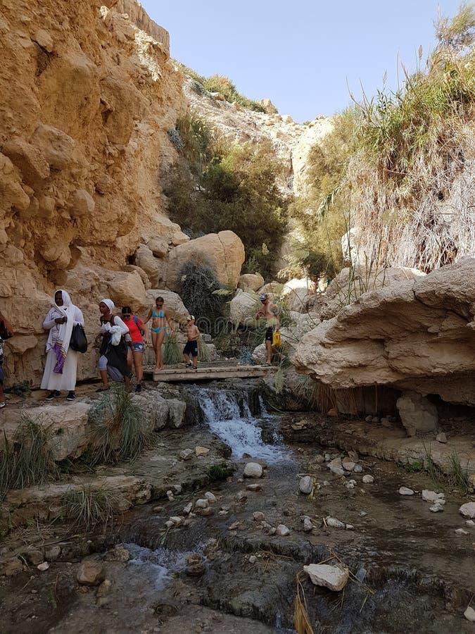 Mix of cultures. Eingedi israel river deadsea desert jordan royalty free stock image
