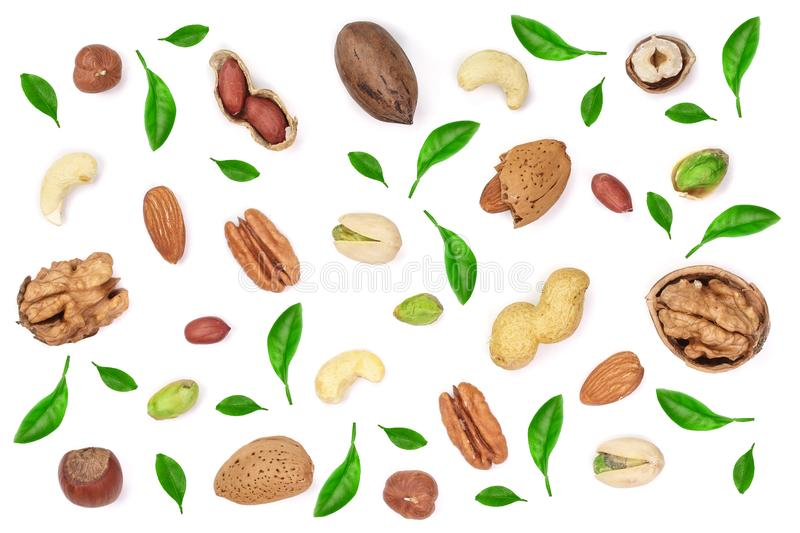 Mix of different nuts decorated with green leaves isolated on white background, Flat lay pattern, Top view royalty free stock photos