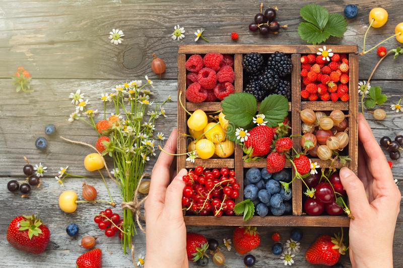 Assorted berries in box. Mix of fresh berries with leaves in vintage wooden box on rustic wooden background. Top view. Raw healthy food. Assorted berries royalty free stock photo