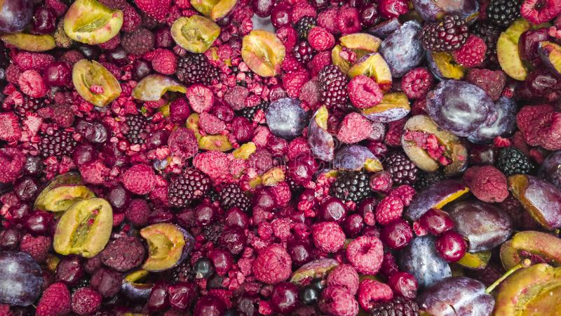 Mix of frozen forest fruits royalty free stock photo