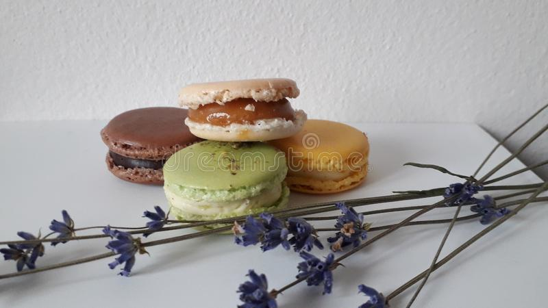 Mix macarons with different filings royalty free stock photo