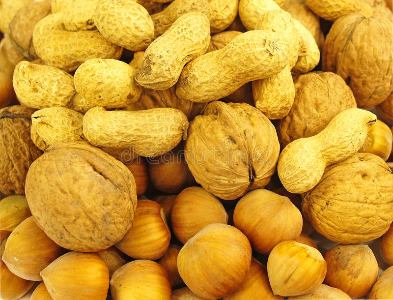 Download A mix of nuts stock image. Image of agriculture, almond - 29303669