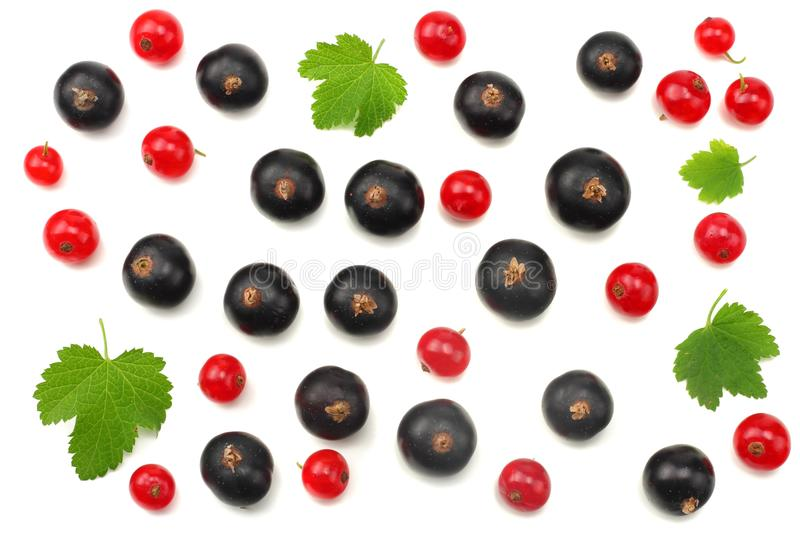 Mix of red currant and black currant with green leaf isolated on a white background. healthy food. top view stock image