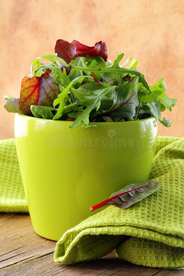 Free Mix Salad (arugula, Iceberg, Red Beet) Stock Image - 30058061