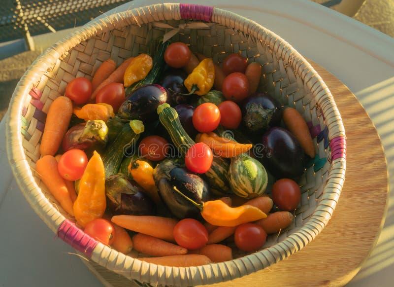 Mix seasonal mini vegetables in a basket stock photos
