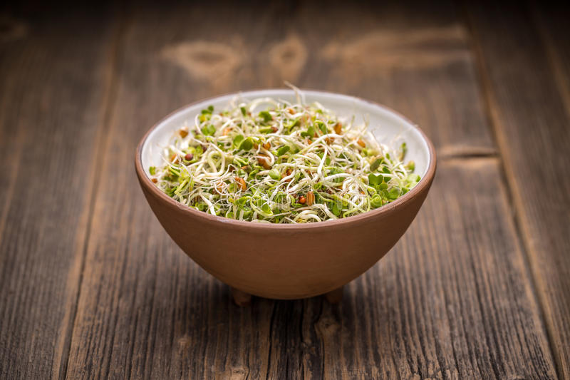 Mix of sprouted seeds. In bowl on a wooden background stock images