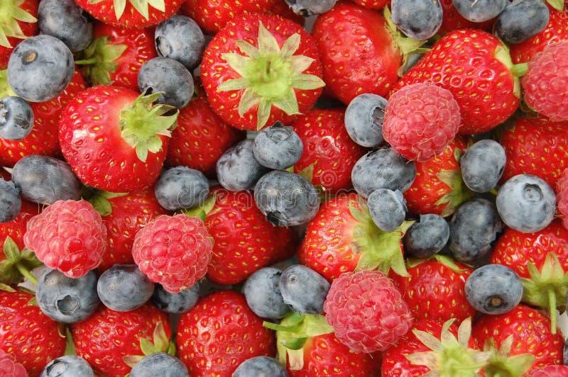 Mixed berries. Assorted ripe summer berries closeup stock photo