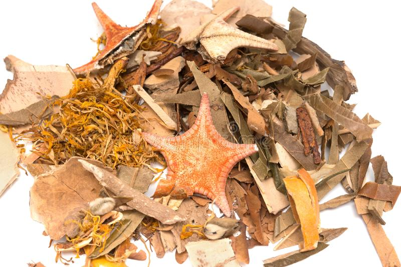 Chinese herb medicine close up on white. Mixed Chinese herb medicine close up on white stock photos