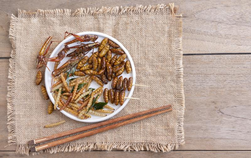 Mixed of crispy worm and insects in a ceramic plate with chopsticks on a wood table. The concept of protein food sources from royalty free stock photography